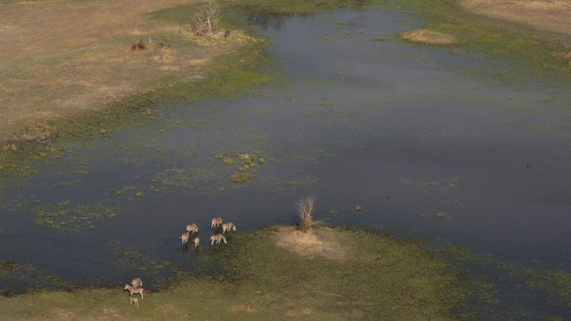 namibija-in-bocvana-2016-3591