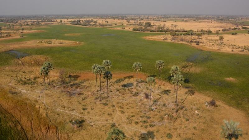 namibija-in-bocvana-2016-3614
