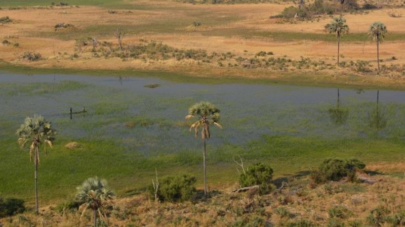 namibija-in-bocvana-2016-3627