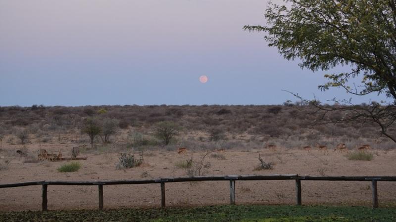 namibija-in-bocvana-2016-3825